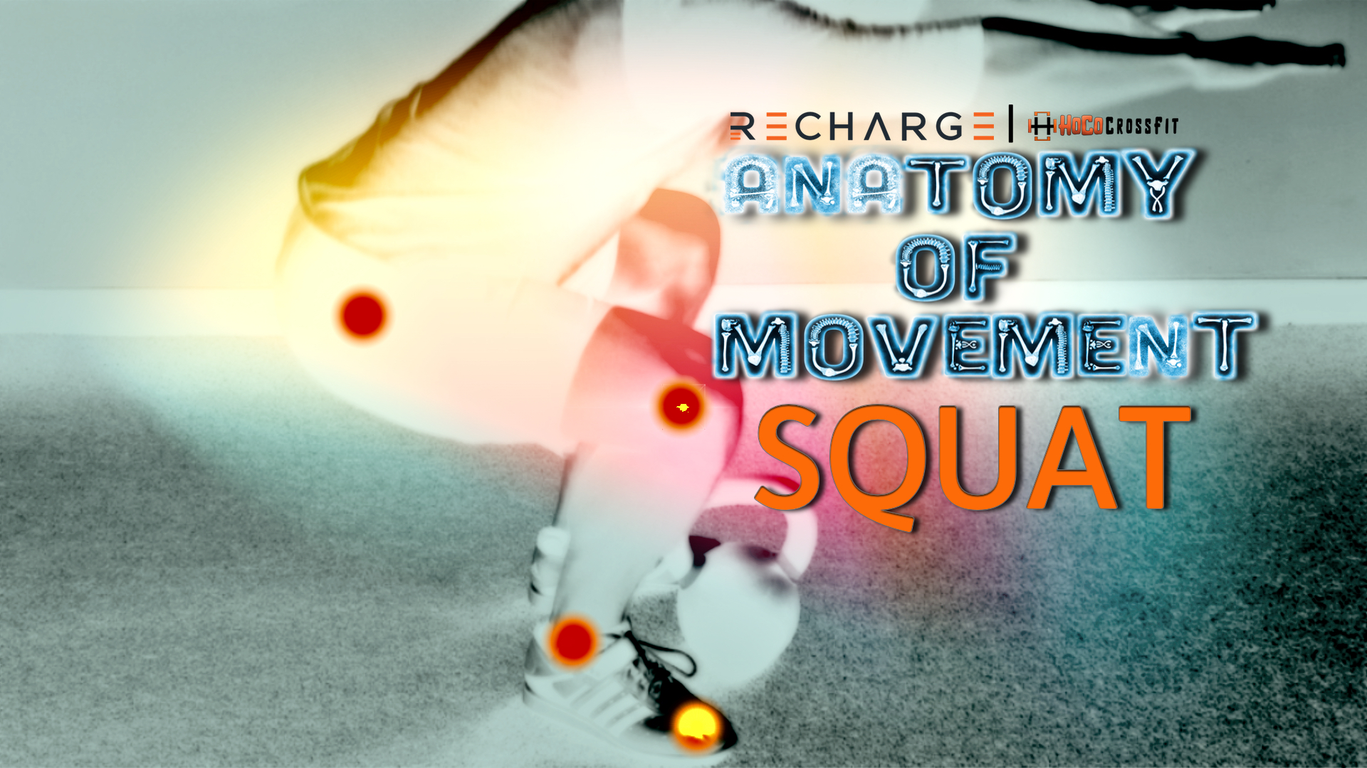 Anatomy of Movement: The Squat - Recharge|HoCo CrossFit